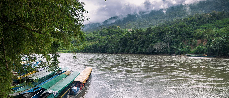 Zátišie z Amazónie