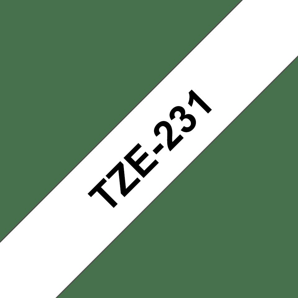 TZE231_main