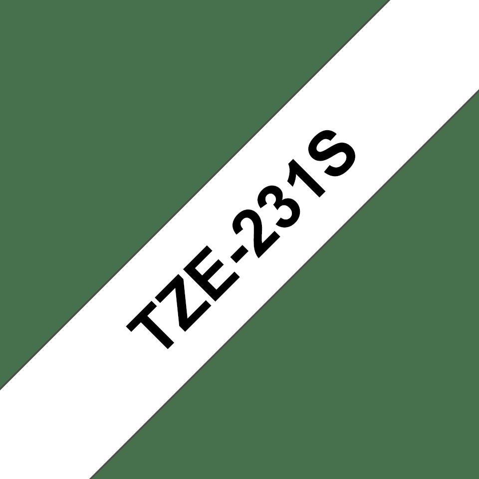 TZe231S_main