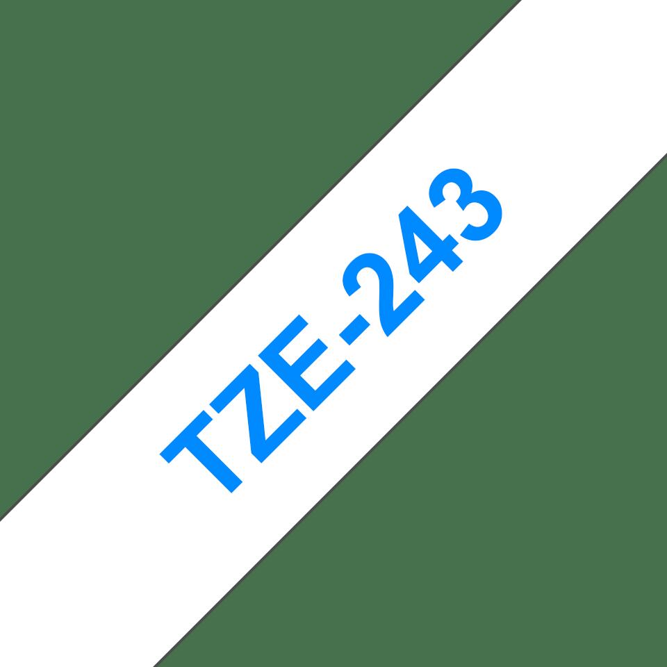 TZe243_main